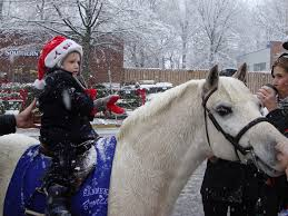 Middleburg Christmas Tree Farm by Middleburg Virginia Full Cry A Hound Blog
