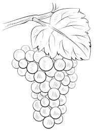 Click To See Printable Version Of Brunch Grapes Coloring Page