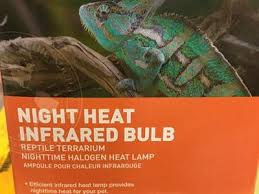 Reptile Heat Lamps Safety by Results For Pets And Livestock Reptiles Ksl Com