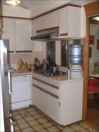 Pantry Cabinet Design Ideas by Kitchen Microwave Pantry Cabinet Small Kitchen Decorating Ideas