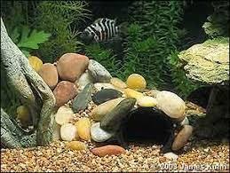 Star Wars Themed Aquarium Safe Decorations by Best 25 Fish Tank Gravel Ideas On Pinterest Aquarium Rocks