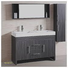 Bathroom Sink Vanities Overstock by Bathroom Sink Faucets 58 Inch Double Sink Bathroom Vanity New