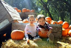 Pumpkin Patch Fresno Ca Hours by Time For Pumpkins Here Are 5 Pumpkin Patches You Can Visit This