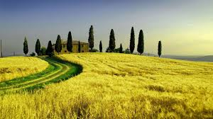 House In Tuscany World High Definition Wallpaper