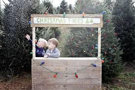 Christmas Trees For Sale Blacksburg Virginia Wedding Inside Tree Farms