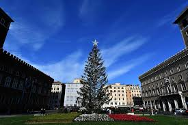 What Is The Best Christmas Tree Variety by Rome U0027s U0027mangy U0027 Christmas Tree Is A Sorry Sight U0027it Has Clearly
