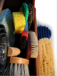 Best Horse Shedding Blade by A Brush Buyer U0027s Guide The Horse Owner U0027s Resource