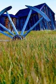 648 Best Blue Houses Images On Pinterest   Blue Houses ... Guide To 4 Favorite Spots For Springtime Salads In San Francisco Farms Old Barn Farm 1080p Wallpaper Hd 169 High 15 Healthy Awesome Restaurants Try Blue My Percy Jackson Oc Marina Beverly By Bluebarnowl On Deviantart Hamptons Real Estate Saunders Associates Shelter Island Spring 2017 Collection Urban Issuu Img_0622jpg Where Eat And Drink The Gourmet Home Rent Lkoum Sweet Dreams Unique Vacations Not Just A Marina Hernando Sun Rick Nelson Samples Best New State Fair Foods Ever