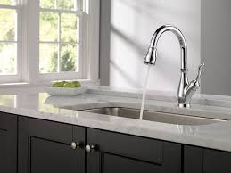 Leaky Delta Faucet Kitchen by Kitchen Faucet Beautiful Delta Faucet Handles Home Depot Kitchen