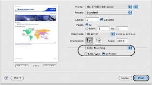Click The In Printer Selection And Print