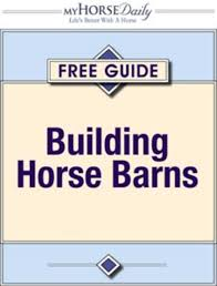 Building Horse Barns - Expert Advice On Horse Care And Horse Riding Clearing Up Terminology Reeds Metals 25 Unique Art Terminology Ideas On Pinterest Fashion Style Building Techniques Rources Door Locks Measurements Rev A Shelf Lock Cabinet Security Lighting Accsories Videakercom 6 Reasons To Go The Sale Barn 1 Reason Not Farm Fresh Larger Milk Penbarn Suggestions Ideas Black Liquid Software Wine Upper Cumberland Trail Pole Engineer Madrona Post Frame Eeering