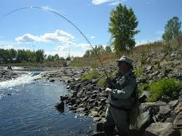 Colorado Fly Fishing Rivers Denver Minturn Anglers