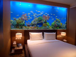 99 Best Aquariums Images On Pinterest | Aquarium Design, Aquarium ... I Really Want A Jellyfish Aquarium Home Pinterest Awesome Fish Tank Idea Cool Ideas 6741 The Top 10 Hotel Aquariums Photos Huffpost Diy Barconsole Table Mac Marlborough Tank Stand Alex Gives Up Amusing Experiments 18 Best Fish Images On Aquarium Ideas Diy Clear For Life Hexagon Hayneedle Bar Custom Tanks Ponds Designs For Freshwater Modern 364 And Tropical Ov Cylinder 2
