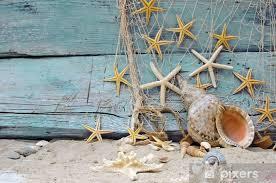 fototapete maritime dekoration fischernetz muscheln und seesterne