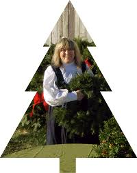Christmas Tree Preservative Spray by Page Title