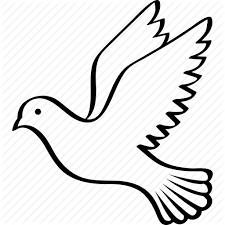 bird columbidae dove flying peace pigeon wings icon
