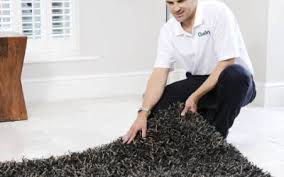 Remove Blood Stain From Carpet by Blog John U0027s Chem Dry Of Whatcom County