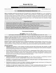 Chief Operating Officer Resume Samples Information Technology Example Myacereporter