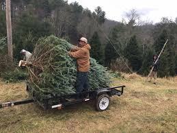 Christmas Tree Baler by O Christmas Tree