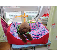 Coolaroo Dog Bed Large by Coolaroo Dog Beds Coolaroo Dog Beds Suppliers And Manufacturers