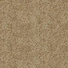 Trafficmaster Carpet Tiles Home Depot by Trafficmaster Hypoallergenic Carpet Samples Carpet U0026 Carpet
