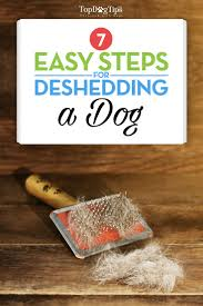 Dog Hair Shedding Blade by 7 Best Methods For Deshedding A Dog With A Step By Step Checklist