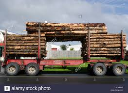 Stacked Wooden Logs, Tree Trunks On A Logging Truck In Kaitaia Stock ... Paul Roy Aftercare Support Nitco Northland Industrial Truck Co Industries Polar Rvs For Sale Trader January February 2018 By Nztrucking Issuu Jcb Quality Cstruction Equipment Avant Inc And Accsories Tim Mclaughlin Account Manager Derrick Swimm Territory Sponsors Earthway Rail Park Competitors Revenue Employees Owler Supporters Dont Waste Ladont La