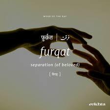Main Tujhe Bhul Gya Lekin Tere Khyaalon Se Furkat Na Mili Urdu