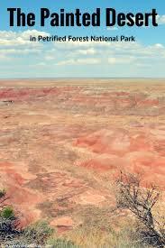 Pumpkin Patch Farms In Phoenix Az by 92 Best Az Field Trips Phoenix Area Central Arizona Images On