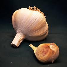roja bj gourmet garlic farm