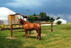 chambre d hote equitation ils vous hébergent avec votre cheval randonnées equestre en nord