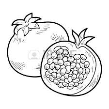 Coloring Book For Children Fruits And Vegetables Pomegranate Vector