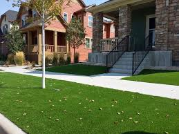 Carpet Grass Florida by Fake Grass Pine Hills Florida Lawn Front Yard