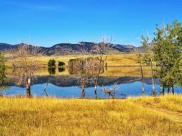 Christmas Tree Permit Colorado Springs 2014 by Arvada Reservoir In Arvada Colorado My Wonderful Home Colorado
