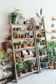 best 25 plant shelves ideas on pinterest bathroom ladder shelf