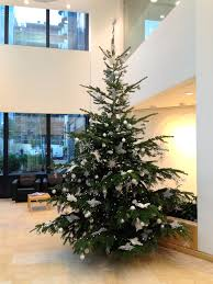 12 Ft Christmas Tree by Corporate Christmas Trees Flowers By Flourish