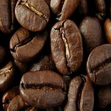 Organic Mexican Oaxaca Coffee Beans 1 Pound