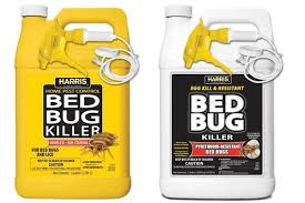 Top 10 Bed Bug Sprays Fast Blood Sucking Insect Killers