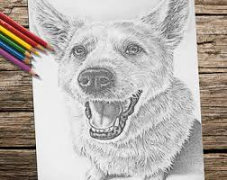 Coloring Book Page Printable Adult Instant Download Dog