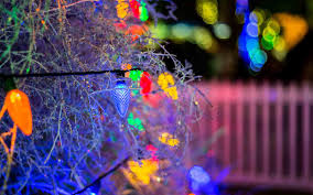 Tumbleweed Christmas Tree Pictures by The Best Christmas Trees In The United States Travel Leisure