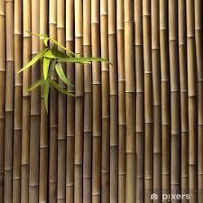fototapete bambuswand