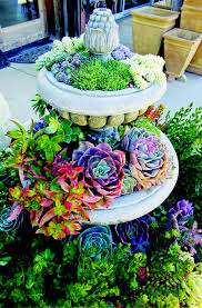 50 Best Succulent Garden Ideas For 2017 Small Backyard Landscaping Ideas On A Budget Diy How To Make Low Home Design Backyards Wondrous 137 Patio Pictures Best 25 Backyard Ideas On Pinterest Makeover To Diy Increase Outdoor Value Garden The Ipirations Image Of Cheap Modern Awesome Wonderful 54 Decor Tips Diy Indoor Herbs