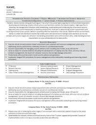 Resume Examples For It Security Plus Brilliant Ideas Of Amazing And Information