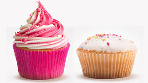Whats The Difference Between A Cupcake And Fairy Cake