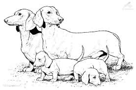 9 Pics Of Dog Family Coloring Pages