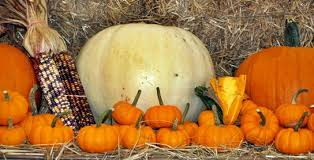 Sarasota Pumpkin Festival by October Sarasota Events Calendar