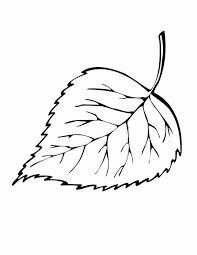 736x951 Simple Leaf Coloring Pages Color Bros