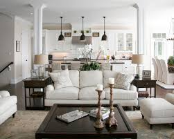 Traditional Living Room Design Ideas Remodels Photos Houzz Furniture