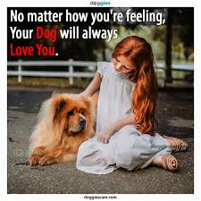 No Matter How You Are Feeling Your Dog Will Always Love You Dog