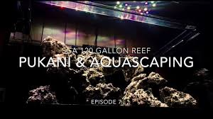SCA 120 Gallon Reef Tank | Ep.7 | Aquascaping, Pukani Rock ... Is This Aquascape Ok Aquarium Advice Forum Community Reefcleaners Rock Aquascaping Contest Live Rocks In Your Saltwater Post Your Modern Aquascape Reef Central Online There A Science To Live Rock Sanctuary 90 Gallon Build Update 9 Youtube Page 3 The Tank Show Skills 16 How Care What Makes Great Large Custom Living Coral Aquariums Nyc